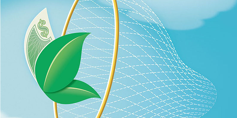 Sustainability Sells: Building Brand Early in Your Sustainability Program